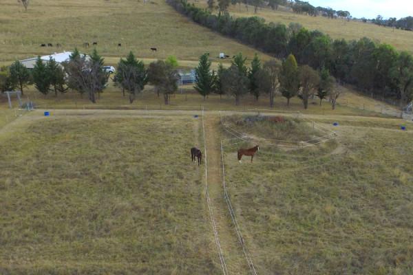 Equine Property